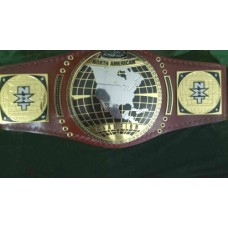 NXT NORTH AMERICAN CHAMPIONSHIP REPLICA BELT | ADULT SIZE ( 2mm plates)